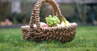Picknick Zubehör